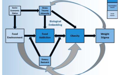 Food Addiction and Psychosocial Adversity